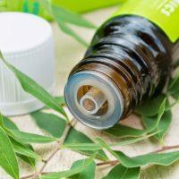 Tea Tree Oil - boccetta adagiata sulle foglie di Melaleuca