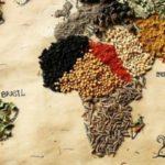Tema del mese: la Giornata mondiale dell'Alimentazione