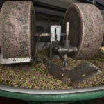 Olio EVO - molazze in granito che macinano le olive