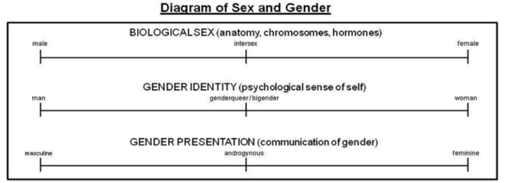 Disforia di Genere - diagramma di sesso e genere