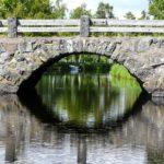 Ponti naturali e ponti viventi nel mondo