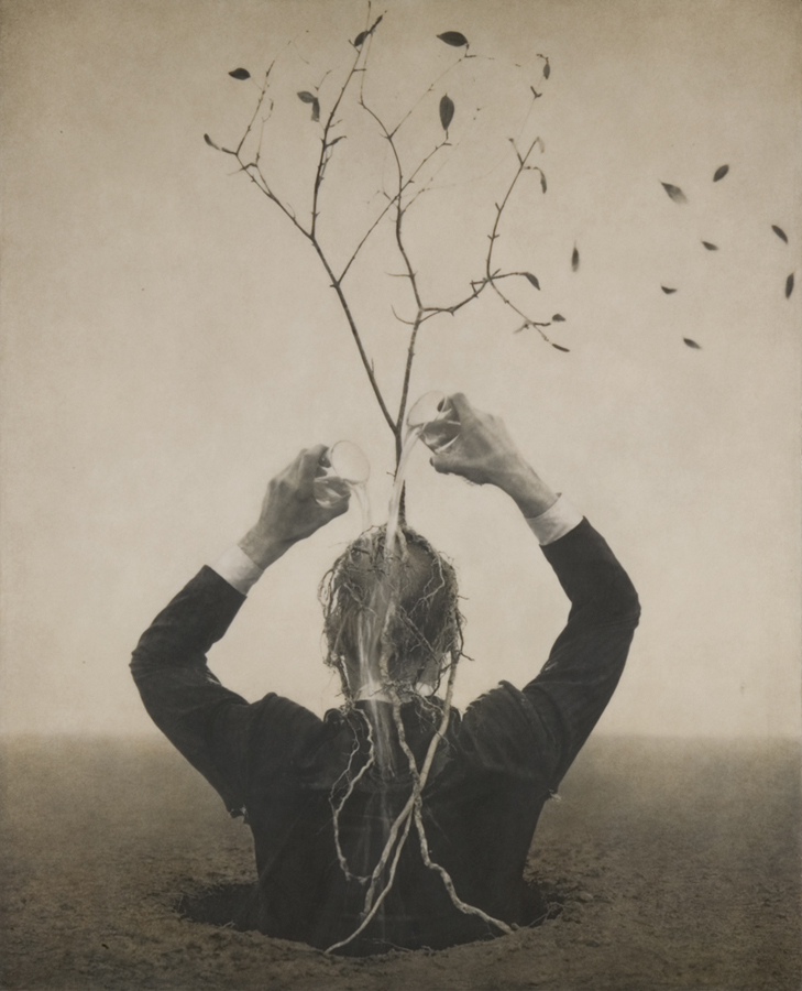 Sciamani - ©Robert & Shana ParkeHarrison, The Source, 2005.