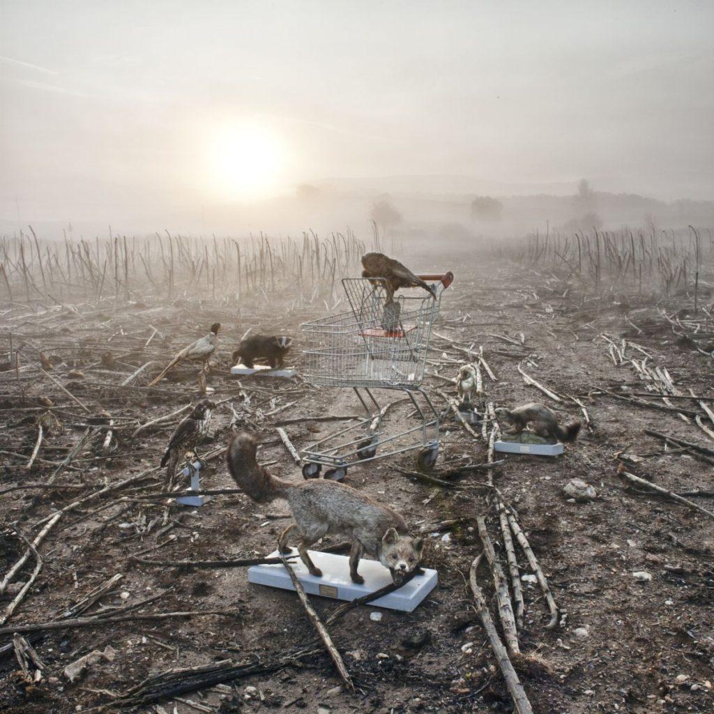 Sciamani - ©Stefano Parrini, dalla serie Land Market.