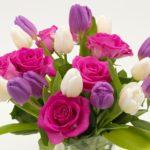 Tema del mese: la rinascita di piante e fiori