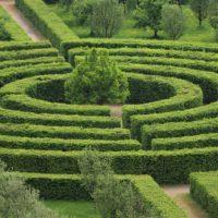 giardino labirinto copertina